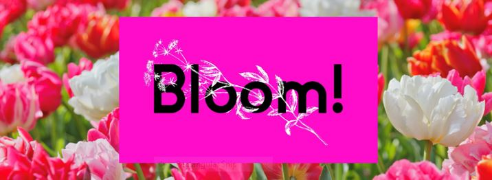 Bloom! Celebrating 250 Years of Horticulture in York! 5th – 8th July 2018